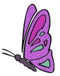 Side butterfly final
