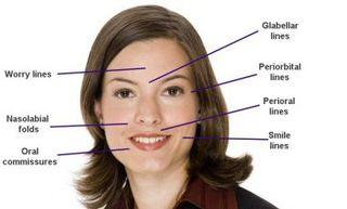 Facial_terminology